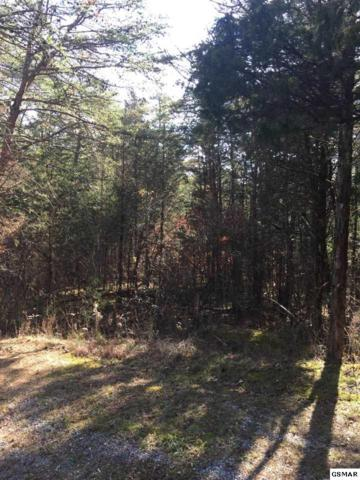Lot 07/01 Chapel Road, Sevierville, TN 37876 (#219895) :: Billy Houston Group