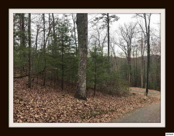 Mockingbird Way Lot 23, Phase 3, Seviierville, TN 37862 (#219896) :: Billy Houston Group
