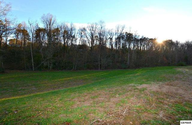 Lot 16 Deer Meadows Rd, Sevierville, TN 37862 (#219904) :: Billy Houston Group