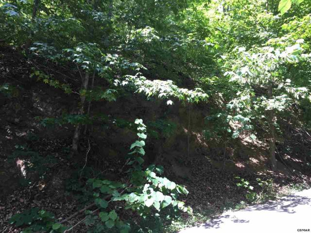 Lot #5 Rising Fawn, Sevierville, TN 37862 (#219948) :: Billy Houston Group