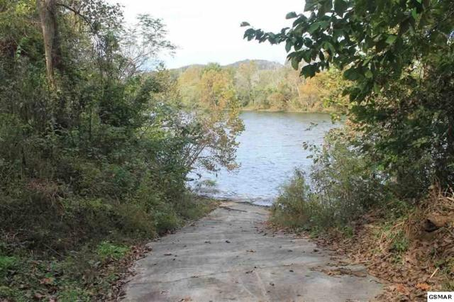 1987 River Mist Circle Lot 43, New Market, TN 37820 (#219964) :: The Terrell Team