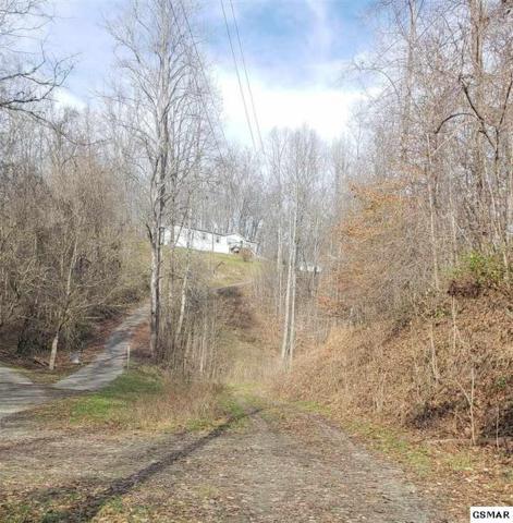 6r1 Deer Trail Way, Seymour, TN 37865 (#219968) :: The Terrell Team