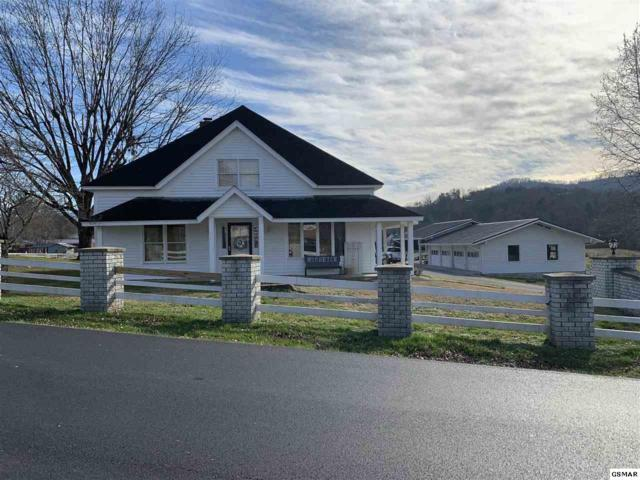 305 Pine Mountain Rd, Pigeon Forge, TN 37863 (#219998) :: Colonial Real Estate