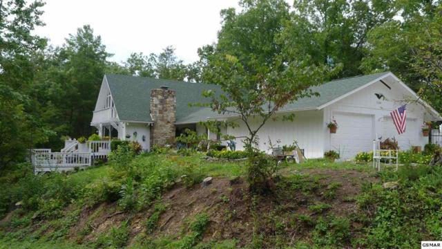3360 Progress Hill Blvd, Pigeon Forge, TN 37863 (#220018) :: Colonial Real Estate