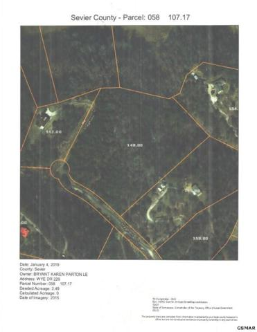 PARCEL 148 Staghorn Ln, Sevierville, TN 37876 (#220040) :: The Terrell Team