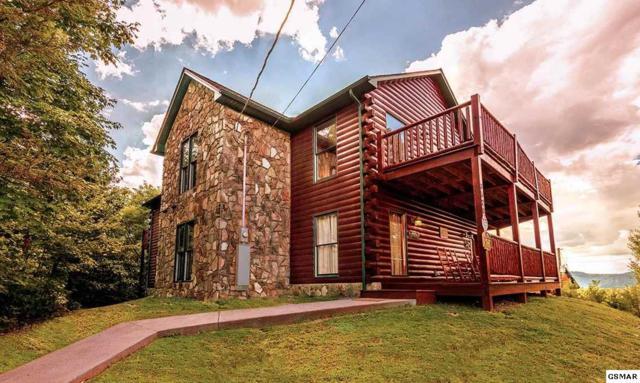 "3520 Manoah Way ""Black Bear Lod, Sevierville, TN 37876 (#220051) :: Billy Houston Group"
