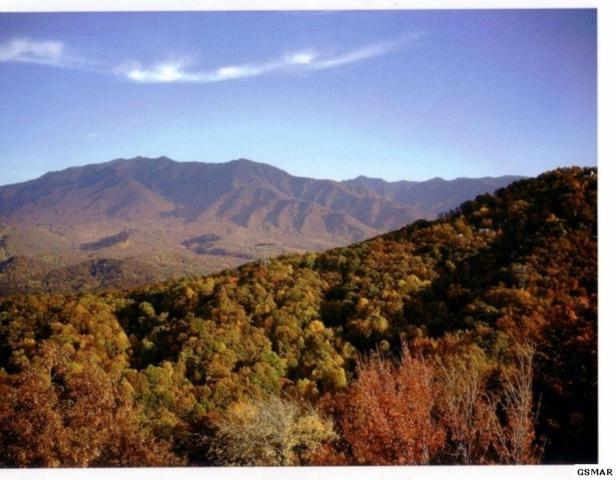 Par 23 Ski View Drive, Gatlinburg, TN 37738 (#220058) :: Prime Mountain Properties