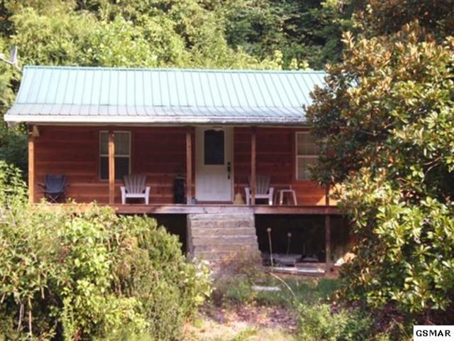12360 Chapman Hwy, Seymour, TN 37865 (#220065) :: Colonial Real Estate