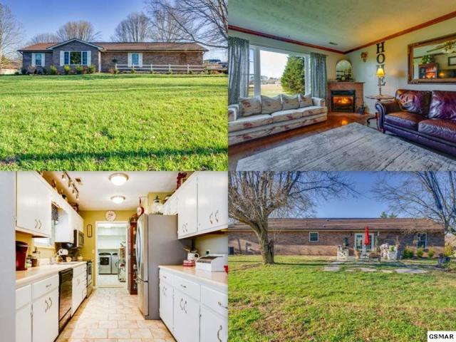 2613 Old Newport Hwy, Sevierville, TN 37876 (#220079) :: Colonial Real Estate