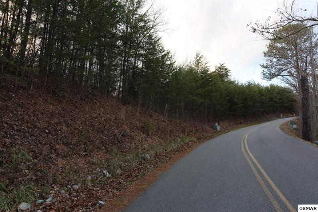 2 Lots for sale Lot 57E Harvest Moon Rd Lot 56E Chamber, Sevierville, TN 37862 (#220104) :: Billy Houston Group