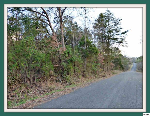 Lot 6 Ranch Rd., Dandridge, TN 37725 (#220107) :: Prime Mountain Properties