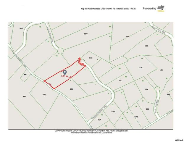 Lot 1 Under The Mtn Rd Meadow View Acr, Newport, TN 37821 (#220124) :: Billy Houston Group