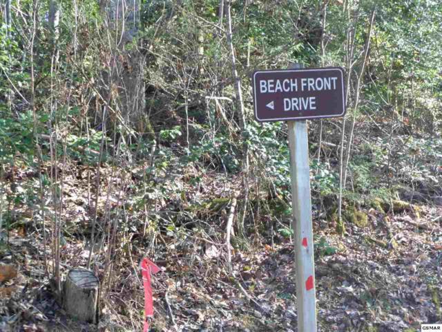 Lot 1146 Beach Front Drive, Sevierville, TN 37876 (#220134) :: The Terrell Team