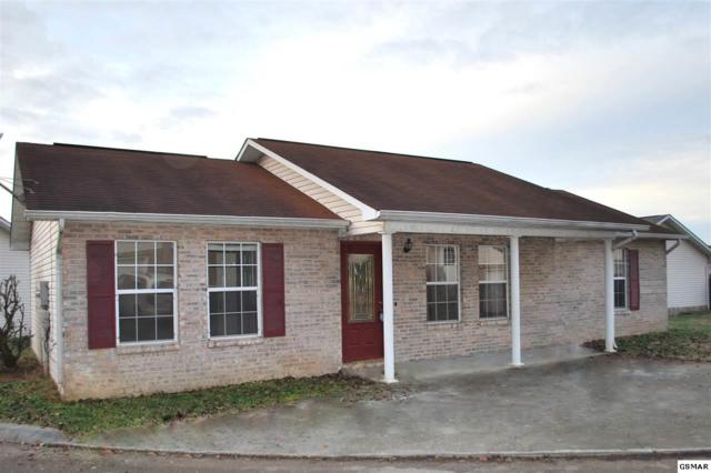 1510 Country Place Way, Sevierville, TN 37862 (#220142) :: The Terrell Team