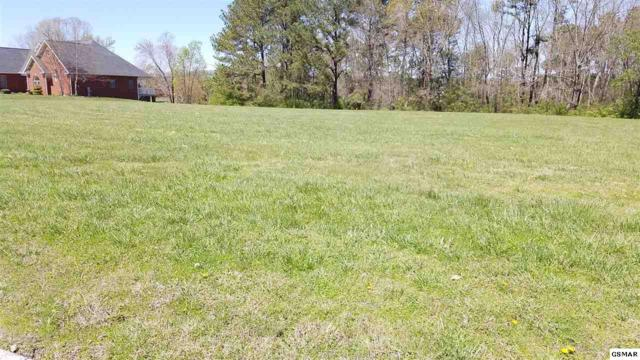 Lot 46 Big Oak Drive, Dandridge, TN 37725 (#220153) :: The Terrell Team
