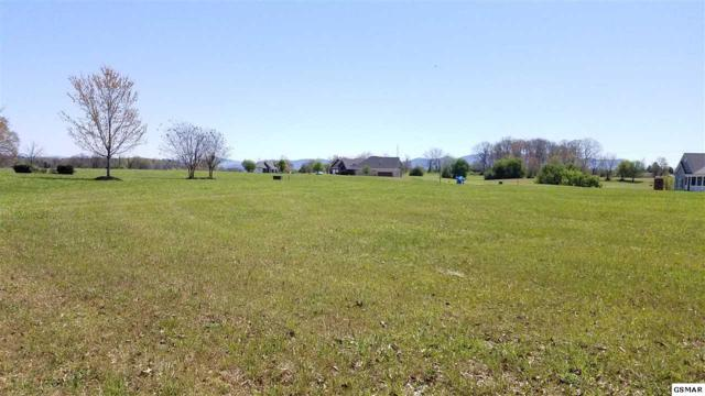 Lot 45 Big Oak Drive, Dandridge, TN 37725 (#220154) :: The Terrell Team