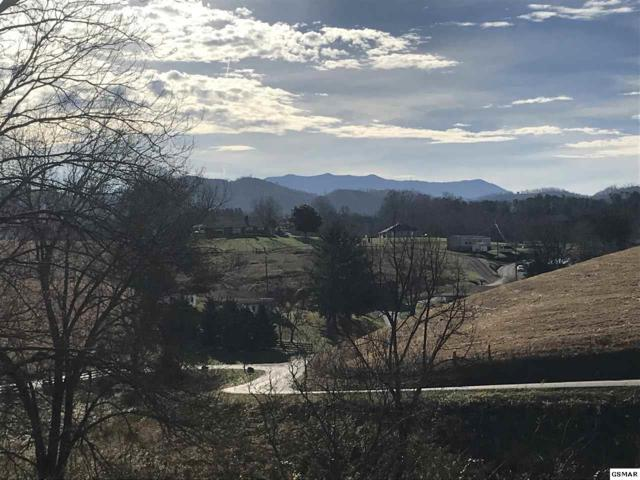 Lot Lot Lot 2-R Tradition Lane, Sevierville, TN 37876 (#220159) :: The Terrell Team
