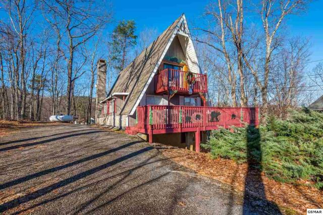 1407 N Arbon Ln, Gatlinburg, TN 37738 (#220176) :: Billy Houston Group