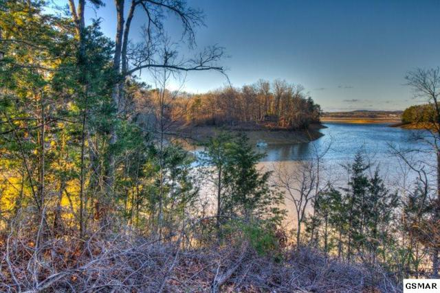 Lot 24 Scott St, Sevierville, TN 37862 (#220183) :: Colonial Real Estate
