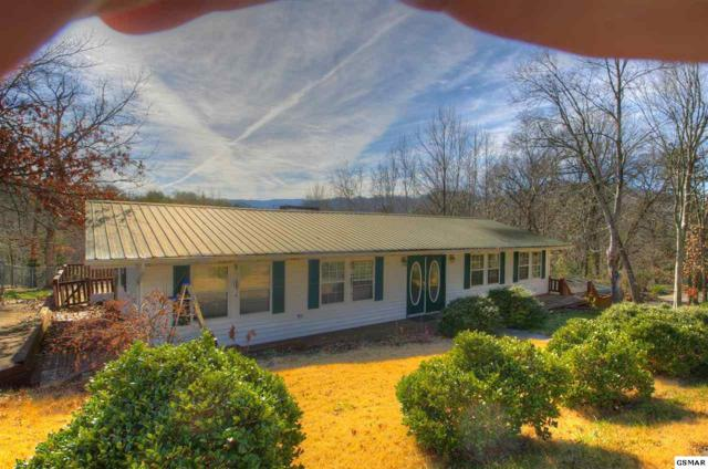 613 Sunnyview Dr, Pigeon Forge, TN 37863 (#220200) :: Billy Houston Group