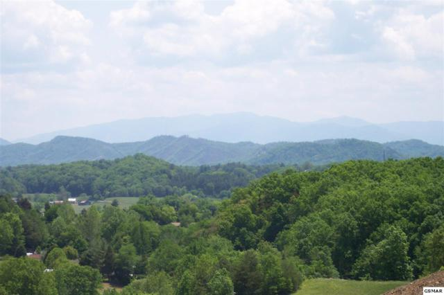Wisteria Lane, Sevierville, TN 37862 (#220243) :: SMOKY's Real Estate LLC