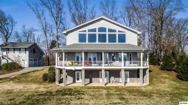 507 Oaken Gate Ct, White Pine, TN 37890 (#220246) :: The Terrell Team