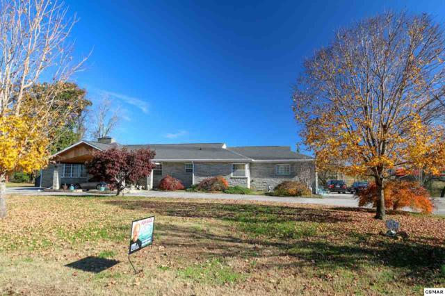 1536 Cliffside Ln, Knoxville, TN 37914 (#220259) :: Billy Houston Group