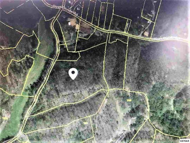 LOT 10 S. New Era Road, Sevierville, TN 37862 (#220260) :: Colonial Real Estate
