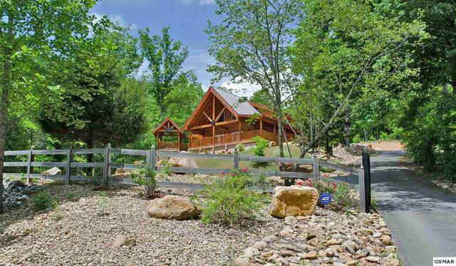 895 Obes Branch, Sevierville, TN 37876 (#220263) :: Billy Houston Group