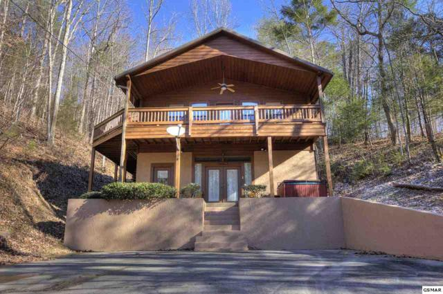 3535 Birds Creek Rd., Sevierville, TN 37876 (#220287) :: Billy Houston Group