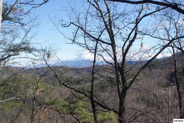Lot# 17 Lonesome Pine Way, Sevierville, TN 37862 (#220290) :: Billy Houston Group