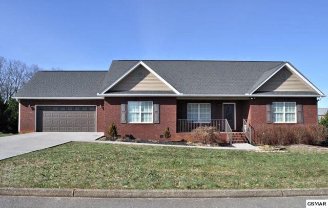 1438 Benjamin Blvd, Sevierville, TN 37876 (#220305) :: Colonial Real Estate
