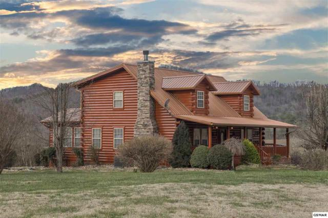 3480 Valleydale Way, Sevierville, TN 37862 (#220308) :: Billy Houston Group