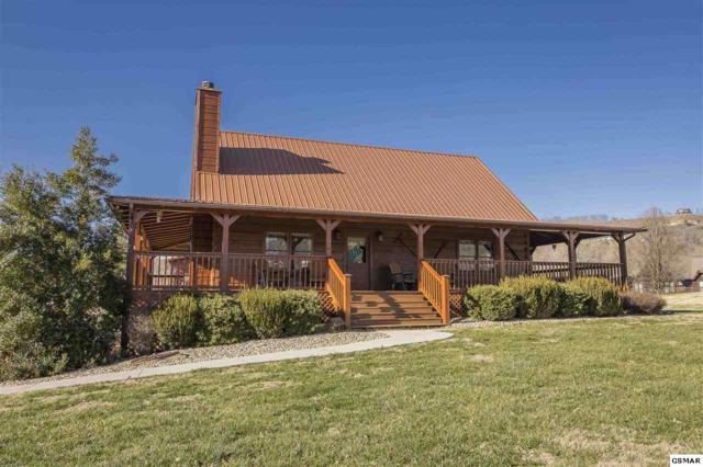 3509 Autumn Woods Ln, Sevierville, TN 37862 (#220309) :: Colonial Real Estate