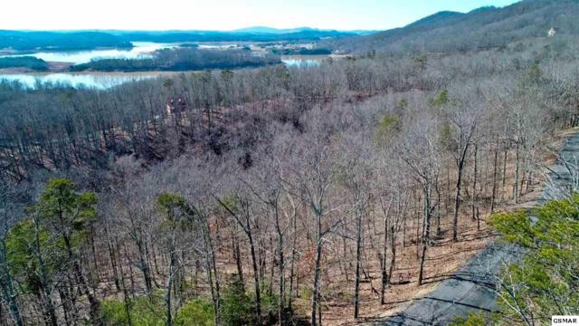 1410 Echota, Mooresburg, TN 37811 (#220320) :: Four Seasons Realty, Inc