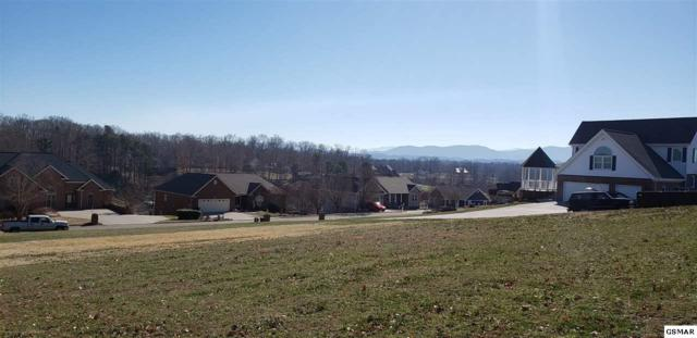 Lot 30 Back Nine Drive, Baneberry, TN 37890 (#220327) :: Jason White Team | Century 21 Legacy
