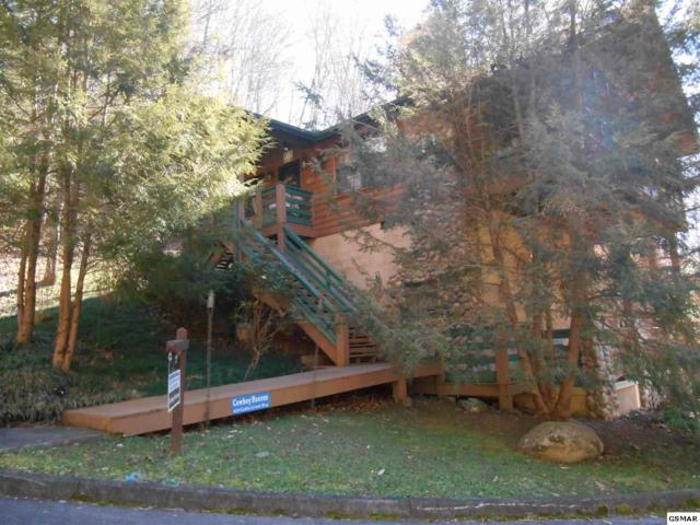 859 Cabin Creek Way, Sevierville, TN 37862 (#220333) :: Colonial Real Estate