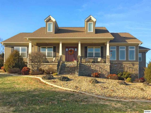 208 Americana Lane, Jefferson City, TN 37760 (#220334) :: Billy Houston Group