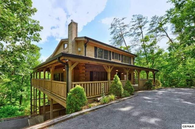 1805 Fantasy Way American Dream , Sevierville, TN 37876 (#220338) :: Colonial Real Estate