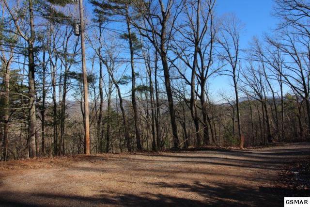 Lot 12 Little Mountain Way, Townsend, TN 37882 (#220352) :: Billy Houston Group