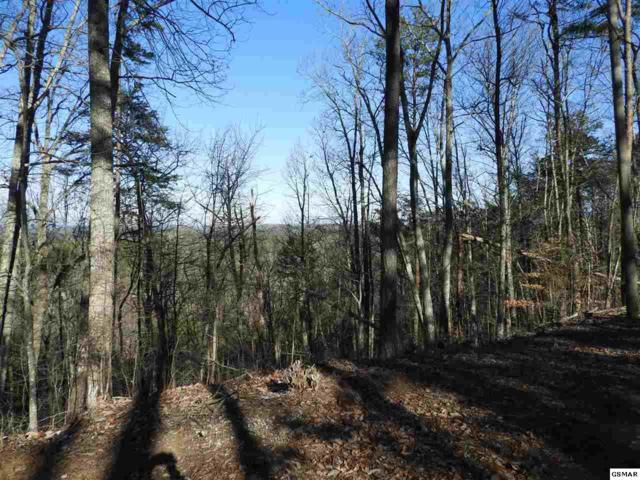 Lot 2 Scenic Woods Way, Sevierville, TN 37876 (#220381) :: Colonial Real Estate