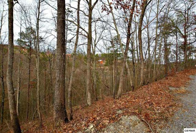Parcel 24 Blue Tick Way, Sevierville, TN 37876 (#220390) :: Billy Houston Group