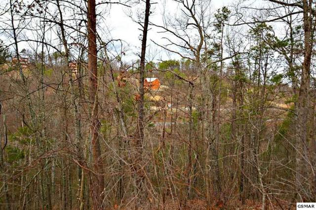 Parcel 23 Blue Tick Way, Sevierville, TN 37876 (#220392) :: Billy Houston Group