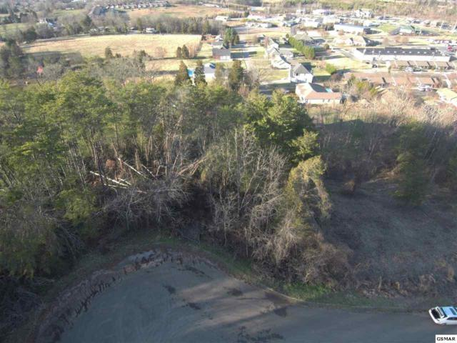 Chapman View Dr - Lot 22, Seymour, TN 37865 (#220393) :: Billy Houston Group