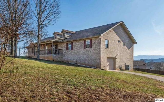 1315 Old Red Ln, Sevierville, TN 37876 (#220409) :: Billy Houston Group