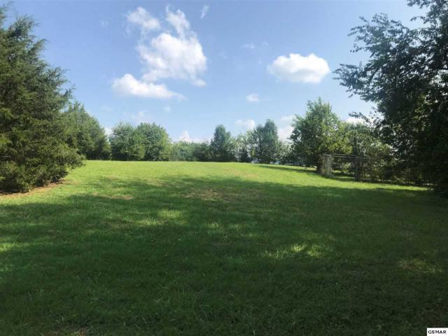 1709 Pittman Center Rd, Sevierville, TN 37876 (#220418) :: Colonial Real Estate