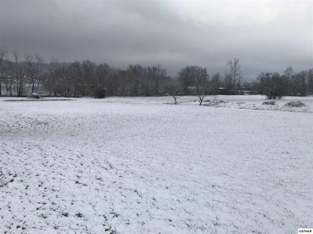 Lot 4 Cove Meadows Dr, Sevierville, TN  (#220419) :: The Terrell Team