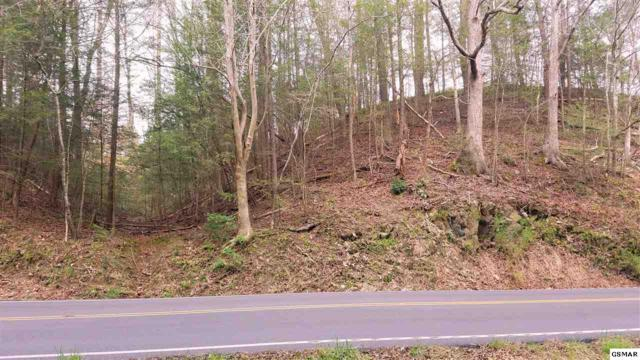 220 Glades Rd. 2 Ely Acres, Gatlinburg, TN 37738 (#220450) :: Colonial Real Estate