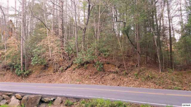 220 Glades Rd 2 Ely Acres, Gatlinburg, TN 37738 (#220451) :: Colonial Real Estate