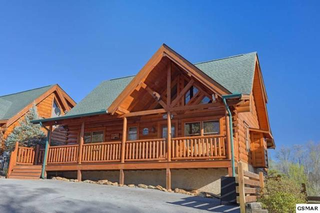 1111 Towering Oaks Drive, Sevierville, TN 37868 (#220458) :: Billy Houston Group